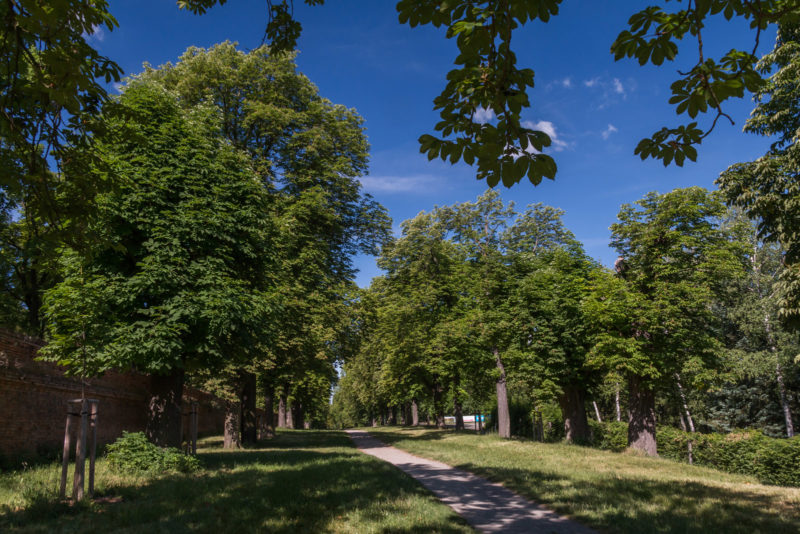 http://www.zamek-slavkov.cz/wp-content/uploads/park1.jpg